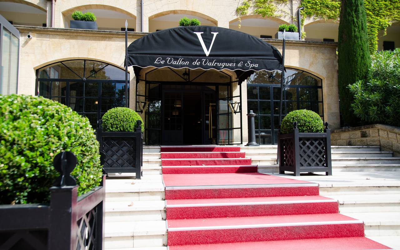 Entrance of our 5-star hotel in St Rémy de provence